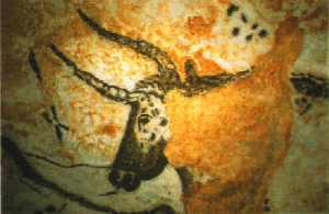 cavetaur